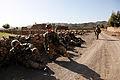 Defense.gov photo essay 120527-A-PO167-122.jpg
