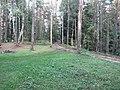 Degučių sen., Lithuania - panoramio (226).jpg