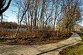 Den Helder - Het Nieuwland - View NNW.jpg