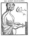 Descartes; A Treatise on the formation of the foetus Wellcome L0017417.jpg