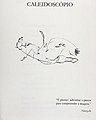 Desenhos Livro I.jpg