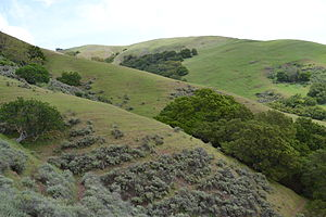 Ed R. Levin County Park - Image: Diablo Range near Milpitas, California 2