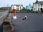 File:Dog attached to ice-cream cone - geograph.org.uk - 425256.jpg