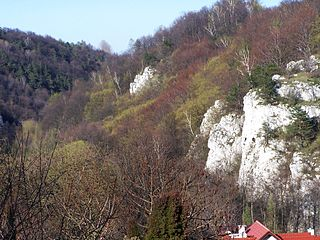 Kraków Valleys Landscape Park