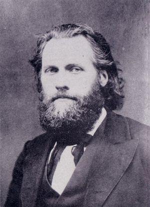 Ferdinand Domela Nieuwenhuis - Ferdinand Domela Nieuwenhuis (ca. 1875)