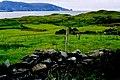 Duquesta Santa Anna Drive - Loughros More Bay - geograph.org.uk - 1352879.jpg