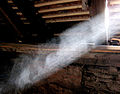Dust dancing in the sunlight Me 074a.jpg