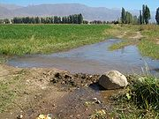 Crop planting in Kyrgyzstan usually requires irrigation