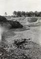ETH-BIB-Kamel-Skelett (Umgebung von Bagdad)-Persienflug 1924-1925-LBS MH02-02-0042-AL-FL.tif