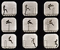Eadweard Muybridge - Athletes. Walking High Leap.jpg