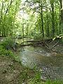 Eberbach en forêt de Haguenau 01.JPG