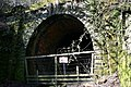 Edlingham Railway Tunnel - geograph.org.uk - 956985.jpg