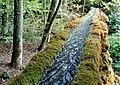 Ein kleiner Aquädukt führt das Trinkwasser über den Bruggbach.jpg