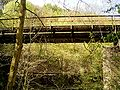 Eisenbahnbrücke Dahlerau 07 ies.jpg