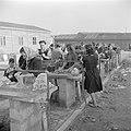 Emigranten (oliem) in het doorgangskamp St. Lucas bij Haifa bij het wassen van …, Bestanddeelnr 255-1177.jpg