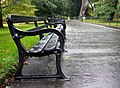 Empty benches, Botanic Park - geograph.org.uk - 1550762.jpg