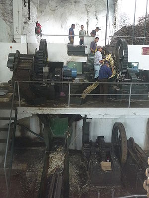 Bagasse - Sugarcane being crushed in Engenho da Calheta, Madeira. The bagasse falls down a chute and is removed on a conveyor belt below.