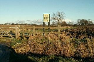 Mickfield Meadow Suffolk Wildlife Trust nature reserve