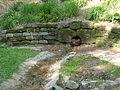Erlenbrunnen4.JPG