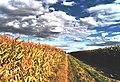 Es ist Herbst auf der Lug in Bietigheim - panoramio.jpg