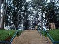 Escadaria da Educação - panoramio.jpg