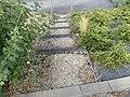 Escaliers Rue Centre St Cyr Menthon 1.jpg