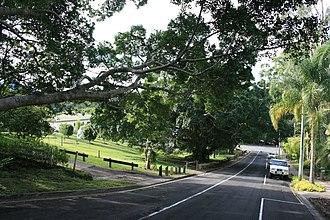 Eumundi War Memorial Trees - Eumundi War Memorial Trees, 2009