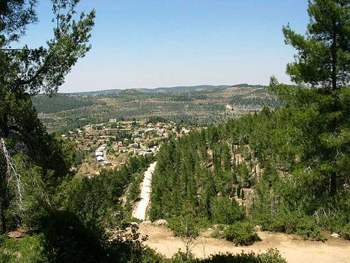 israels tolv stammer