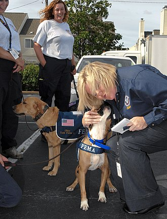 FEMA Urban Search and Rescue Task Force - Rescue dogs