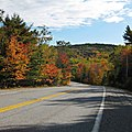 Fall Colors Acadia National Park.jpg