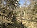 Fall Run Park in Shaler Township, late winter - 6.jpeg