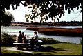 Family picnic Buena Vista Lagoon-557488.jpg