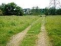 Farm track, near Exwick Barton - geograph.org.uk - 1367212.jpg