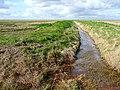 Farmland near Wainfleet (12) - geograph.org.uk - 1627232.jpg