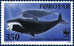 Bowhead whale - Stamp showing drawing of mother and calf from Faroe Islands