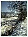 February Minus 10 Grad Celsius - Master Magic Rhine Valley Photography 2013 - panoramio.jpg