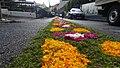 Festa de Nossa Senhora da Luz flower carpet (Ponta da Sol) (37386571514).jpg