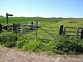 Field and footpath near Powburn - geograph.org.uk - 1332529.jpg