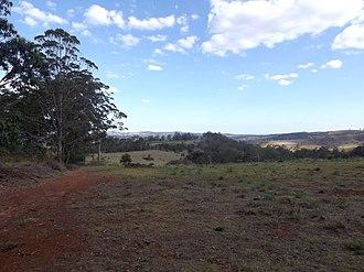 Grapetree, Queensland - Grapetree landscape, 2014