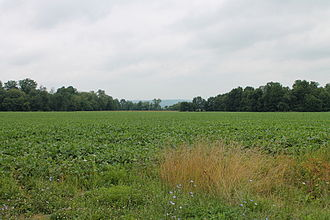 Anthony Township, Montour County, Pennsylvania - Field in Anthony Township, Montour County, Pennsylvania. The Muncy Hills are the blue hills on the horizon.