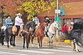 Fiestas Patrias Parade, South Park, Seattle, 2015 - 293 - the horses (20971562414).jpg