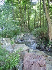 Il fiume Verre in località Acquicella.