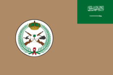 Flag of the Royal Saudi Land Forces.png