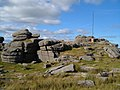 Flagpole on Roos Tor - geograph.org.uk - 212236.jpg
