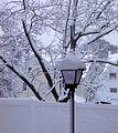Flickr - Nicholas T - October Snow (6).jpg