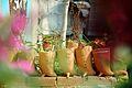 Flowerpots (9654103486).jpg