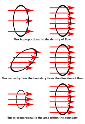 The flux visualized. The rings show the surface boundaries. The red arrows stand for the magnetic field or the flow of electrons. The number of arrows that pass through each ring is the flux.