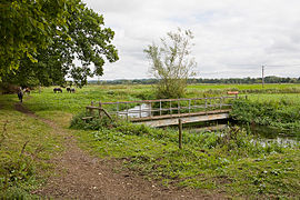 Footbridge over stream east of Turmer - geograph.org.uk - 1465244.jpg