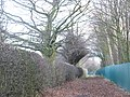 Footpath from Bradwall Road to Offley Road - geograph.org.uk - 1102253.jpg