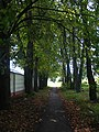 Footpath to The settlement of the Minsk Vegetable Factory - panoramio.jpg